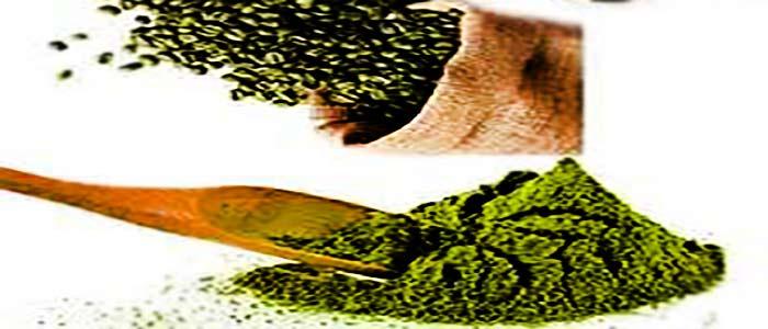 پودر قهوه لاغری سبز