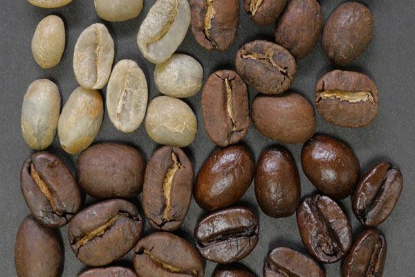 فروش انواع قهوه برزیل
