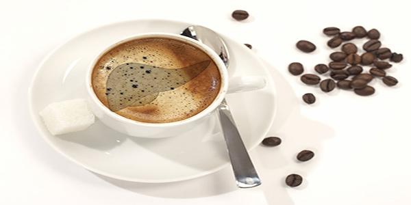 فروش بهترین قهوه فرانسه