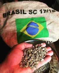 قیمت قهوه سبز بزریلی اصل