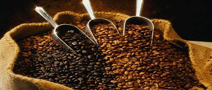 مرکز پخش قهوه ترک