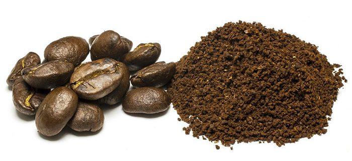 قیمت قهوه اندونزی روبوستا