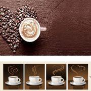 فروش قهوه فرانسه