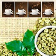 بازار دانه قهوه سبز و خام