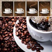 قهوه گانودرما دکتر بیز