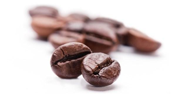 فروش قهوه خام