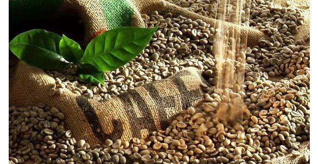 هر کیلو قهوه سبز