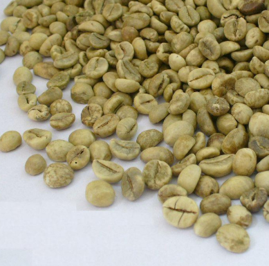 دانه قهوه سبز ویتنام