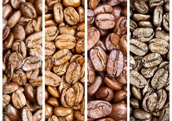 خرید عمده قهوه اسپرسو