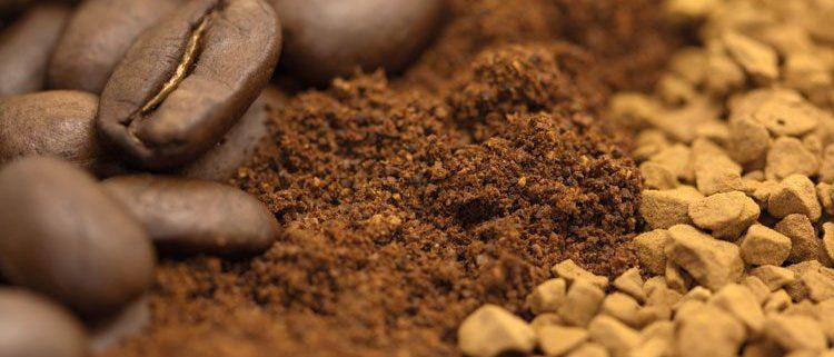 فروش قهوه گلد اکوادور به صورت عمده