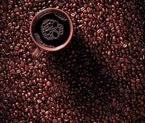 قیمت عمده دانه قهوه روبوستا در تهران