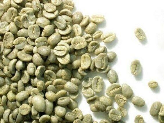 وارد کننده انواع قهوه خام ارزان در ایران